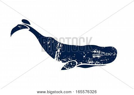 Sperm whale. Physeter macrocephalus. Whale isolated on a light background. Logo for your design. Ink. Hand drawn.