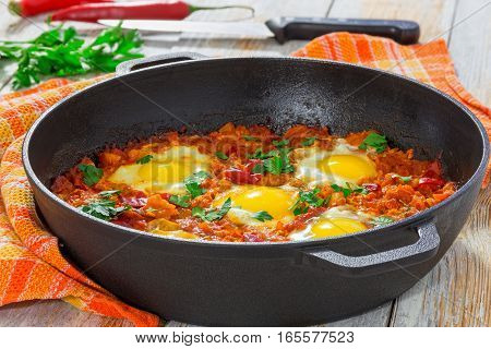 Delicious Middle East  Shakshuka - Fried Eggs, Onion, Bell Pepper, Tomatoes