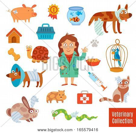 Veterinary Clinic. Pet Vet. Set of medical tools and healthcare equipment. Funny cartoon character. Isolated on white background. Vector illustration. Flat icons. Modern design style symbol collection