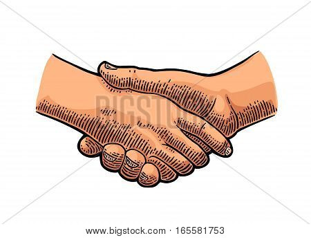 Handshake. Vector color vintage engraving illustration isolated on a white background. For web poster info graphic.