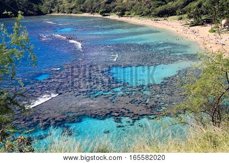 Amazing view of Hanauma Bay, Oahu, Hawaii