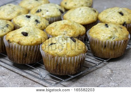 Homemade banana chocolate chip muffins cooling on wire rack.