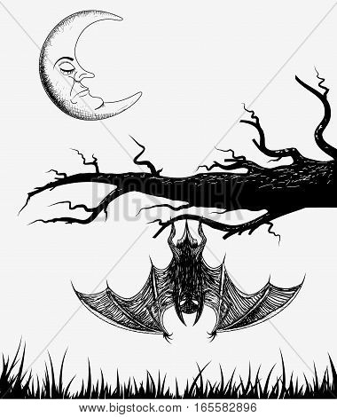 Bat is hanging on a branch.Vector illustration