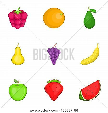 Colored fruit icons set. Cartoon illustration of 9 colored fruit vector icons for web