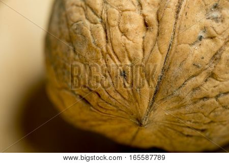 Detail Of A Walnut Photographed Close Up.