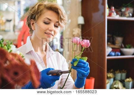 Calm woman is cutting rose in flower shop carefully. She is standing and smiling