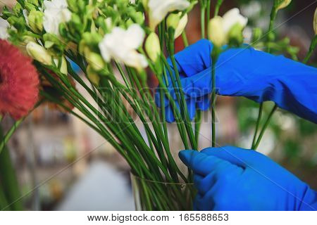 Close up of female hands touching flowers in vase. Woman is wearing rubber gloves