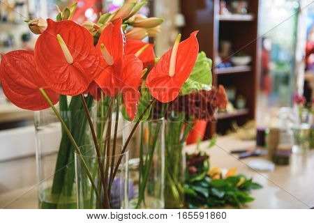 Close up of red callas in vase on table in shop. Different bouquets on background