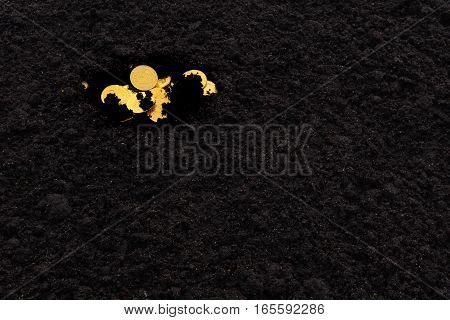 A treasure of golden coins in the black earth. Some coins are covered with soil.