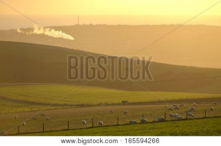 Plume Of Smoke From An Industrial Incinerator In The Midst Of The South Downs National Park