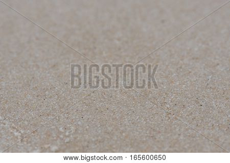 Narrow Focus of Wet Sand Beach vacation background