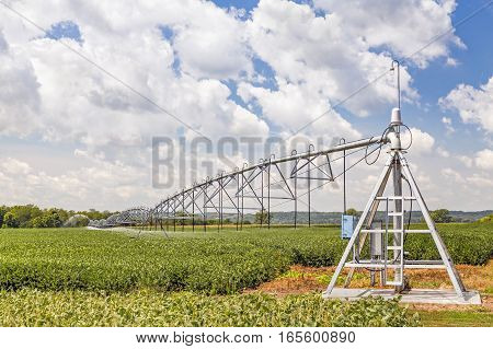 A soybean field in the American Midwest is watered by a center pivot irrigation system under a cloudy blue sky.