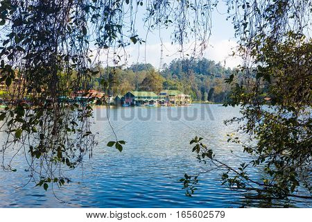 Kodaikanal Lake Boat Rowing Club Branches Framed