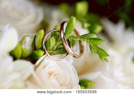 Wedding rings close-up on branch. Wedding decor