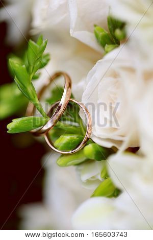 Wedding rings close-up on branch. Wedding decor white