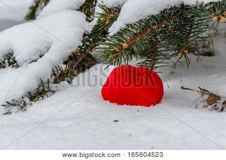 Red gift box for an engagement ring in the shape of a heart in the snow against the background of snow-covered fir branches