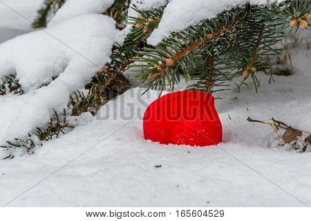 Gift box for an engagement ring in the shape of a heart in the snow against the background of snow-covered fir branches