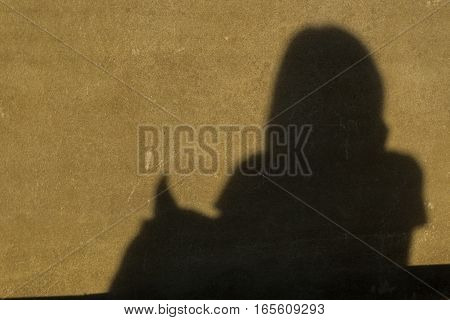 shadow woman and dog on dirty wall.