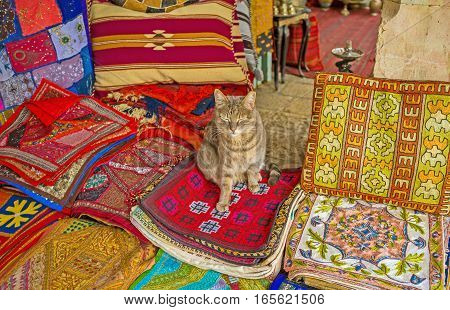 The puss sits on the handmade embroidered pillowcases in the Market stall Jerusalem Israel.