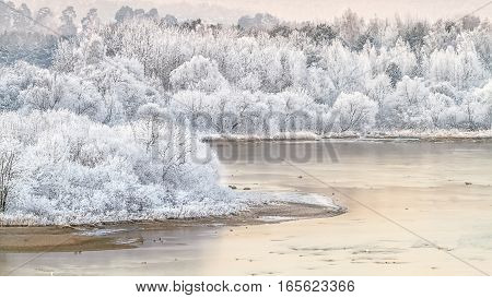 Snow-white shores of the Nemunas trees in winter