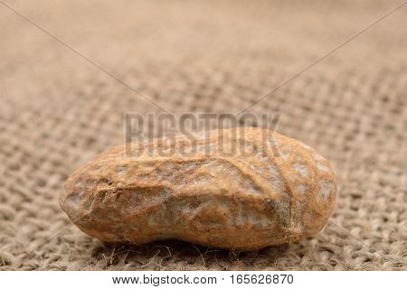 Macro Picture Of A Peanut In A Shell On A Jute Background