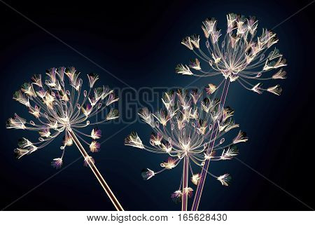 Color Glass Flower Isolated On Black , The Bell Agapanthus