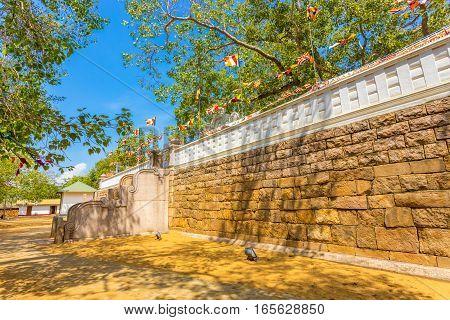 Anuradhapura Jaya Sri Maha Bodhi Tree West Steps