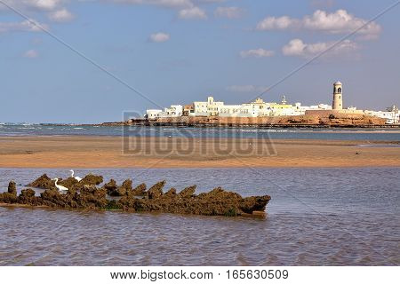 SUR, OMAN: View of Ayjah from the main beach of Sur with white Herons in the foreground