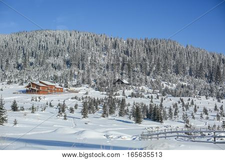 Snowy Valley With Trees And Vacation Houses In Carpatian Mountains On A Sunny Day
