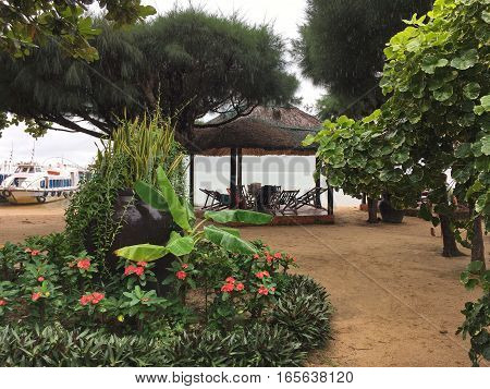 beautiful beach with lots of exotic plants, flower beds, pine trees with long fluffy needles, canopy beds, ships, sea, Vietnam