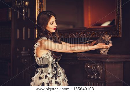 Cute glamorous woman touching cat in classic interior. Vogue style portrait