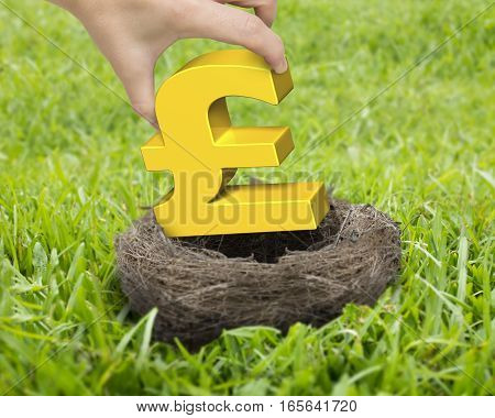Woman Hand Holding Golden Pound Sterling Symbol In Nest