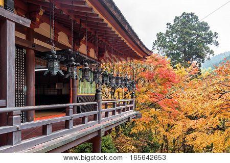 Tanzan Shrine in autumn Nara Prefecture Japan