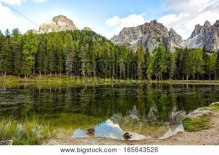 Lago Antorno Dolomites Lake mountain landcape with Alps peak reflection