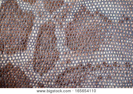 Texture of genuine leather close-up, embossed under the skin of a reptile, trend background