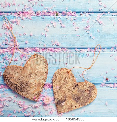 Two decorative hearts and petals of pink sakura flowers on blue wooden background. Selective focus. Place for text. Toned image.