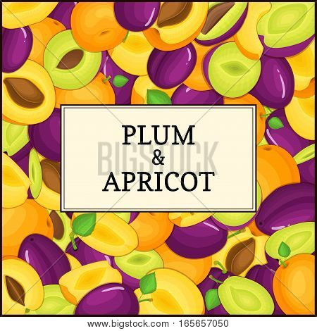 The Square frame on ripe apricot plum fruit background. Vector card illustration. Delicious fresh juicy apricots plums whole, peeled, piece of half, slice, seed appetizing looking for packaging design