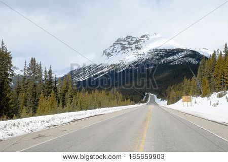 Road in Canadian Rockies in Winter Alberta Canada