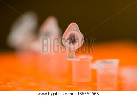 Close-up macro detail of a labeled polymerase chain reaction (PCR) tube with the lid open on an orange PCR plate with other tubes ready for amplification. Cancer and genetics concept.