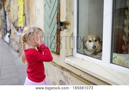 Adorable Little Girl Met Friendly Dog Behind A Window