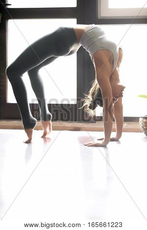Young attractive woman practicing yoga near window, standing in Bridge exercise, Urdhva Dhanurasana pose, working out, wearing sportswear, indoor full length, home interior, vertical. Copy space