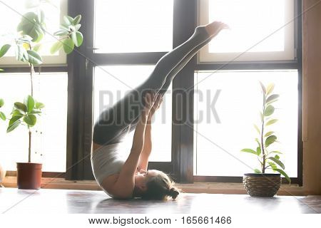 Young attractive woman practicing yoga, standing in unsupported Shoulder stand exercise, Niralamba Sarvangasana pose, working out, wearing sportswear, grey pants, bra, full length, home interior