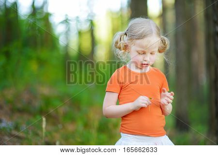Cute Little Girl Playing 'loves Me? Loves Me Not?' Daisy Petal Game