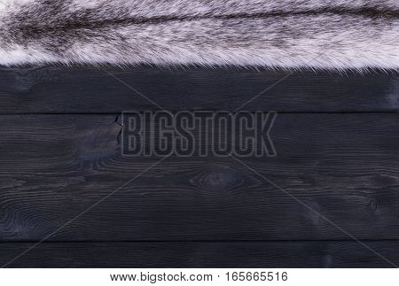 The white fur mink on a black wooden background texture
