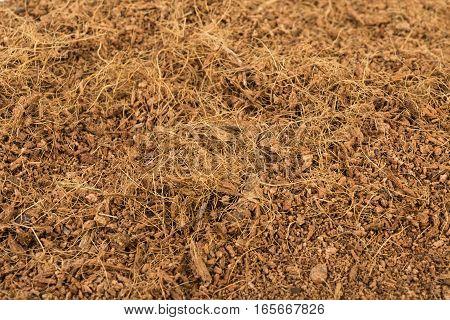 Dry coconut coir. Macro shot. Stock image.