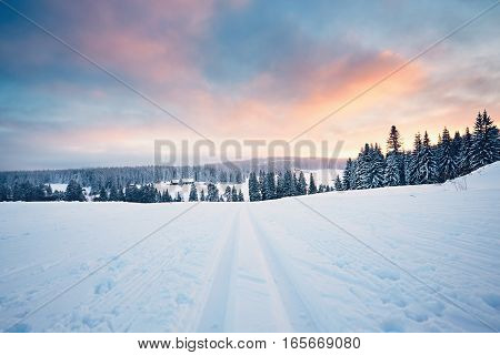 Winter landscape at the sunset. Cross country skiing in Sumava mountains Czech Republic
