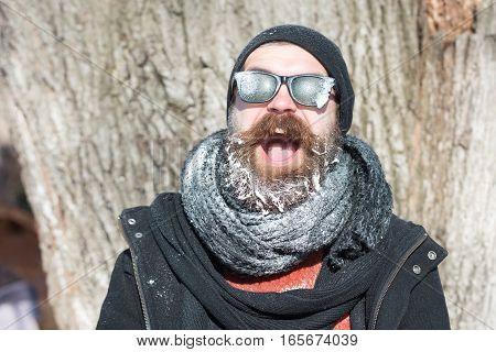 Handsome Bearded Man Near Tree