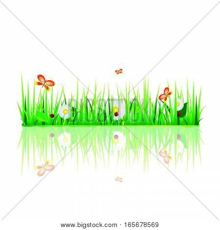 Grass With Flora And Fauna Design Illustration