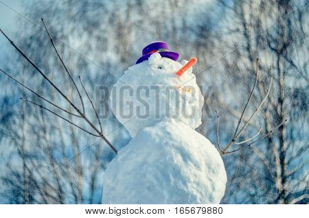 Snowman with purple hat against abstract outdor background