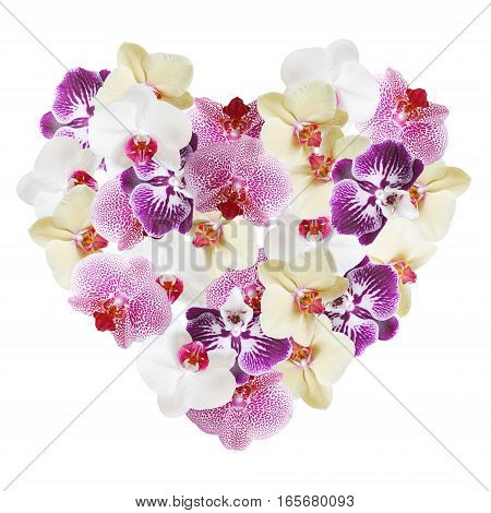 Postcard Valentine's Day. Heart of flowers orchid